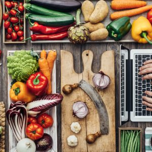 Dietary Products and Programs